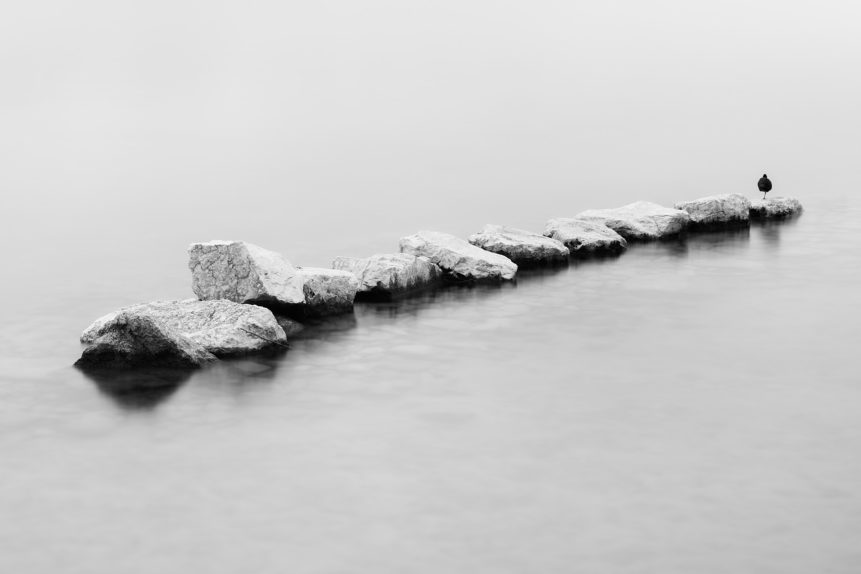 A minimalist lake landscape in black & white, featuring a line of rocks with a coot sleeping on one leg. On the Rocks - Copyright 2020 Johan Peijnenburg - NiO Photography