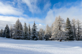 A landscape in colour, featuring a meadow and alpine forest in winter with a fresh coat of virgin snow. Mountain peaks rise above the fog. Unspoiled - Copyright Johan Peijnenburg - NiO Photography