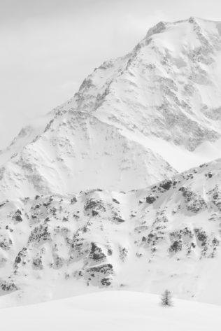 A snowy mountain landscape in B&W of the Swiss Alps in winter, featuring a solitary larch tree and Monte Rosa. The Last One - Copyright Johan Peijnenburg - NiO Photography