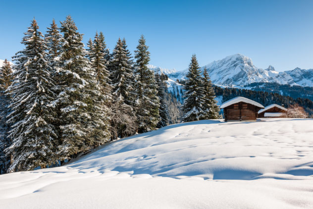 The Swss Alps in winter, featuring snow-dusted trees, a barn, a chalet and the Grand Muveran mountain. Winter Bliss - Copyright Johan Peijnenburg - NiO Photography