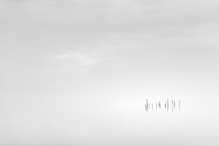 A coastal landscape in B&W, showing the North Sea coast of Zeeland in The Netherlands with fishing net sticks. Daydreaming - Copyright Johan Peijnenburg - NiO Photography
