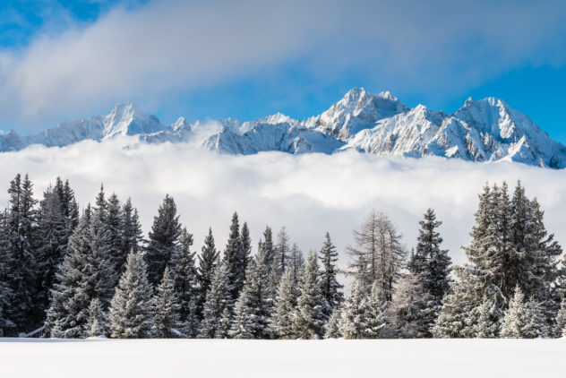 A mountain landscape in colour, with early morning light on the Mont Blanc Massif in winter rising above the clouds. In the foreground fresh snow and a line of trees with snow and hoarfrost. Majestically Rising - Copyright Johan Peijnenburg - NiO Photography