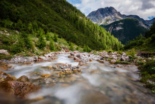 A mountain river flowing down a slope towards a forest and Piz Pisoc in the Swiss Alps, near Scuol in the Swiss National Park of Graubünden. River Wild - Copyright Johan Peijnenburg - NiO Photography