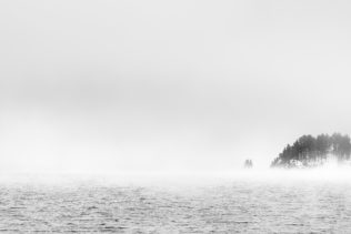 A landscape in black & white, showing a foggy lake landscape at Lake Sils in Engadin with an island with larch trees surrounded by fog. Misty Morning - Copyright Johan Peijnenburg - NiO Photography