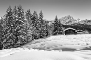 A mountain landscape in B&W, showing the beauty of winter in the Swiss Alps, with a dusting of snow on the trees and the mountains. Let it Snow - Copyright Johan Peijnenburg - NiO Photography
