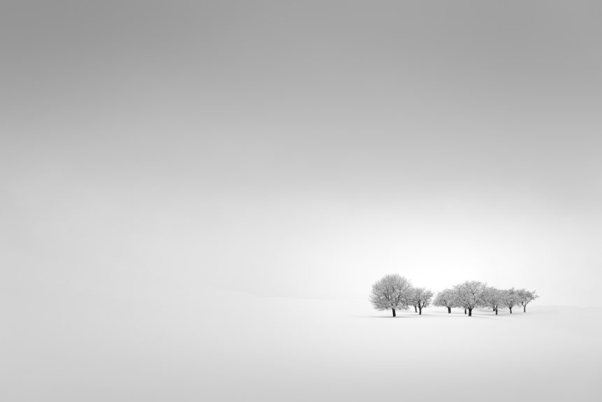 Minimalist fine art in black & white with fog and snow, featuring a group of fruit trees in a misty countryside winter landscape. Winter Tranquillity - Copyright Johan Peijnenburg - NiO Photography